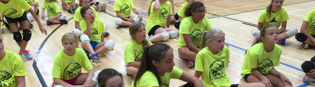 Camps Winman Volleyball Club A Non Profit Organization Promoting The Sport Of Volleyball In Winnipeg And Surrounding Areas